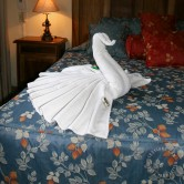Mexico_TowelSwan_WM_670